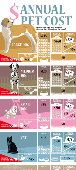 Annual Cost of Pets [Infographic]   Daily Infographic