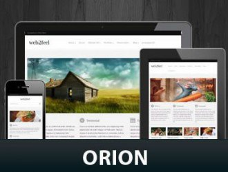 Orion WordPress Themes