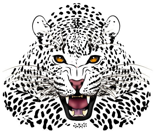 Set of Tiger vector picture art 18