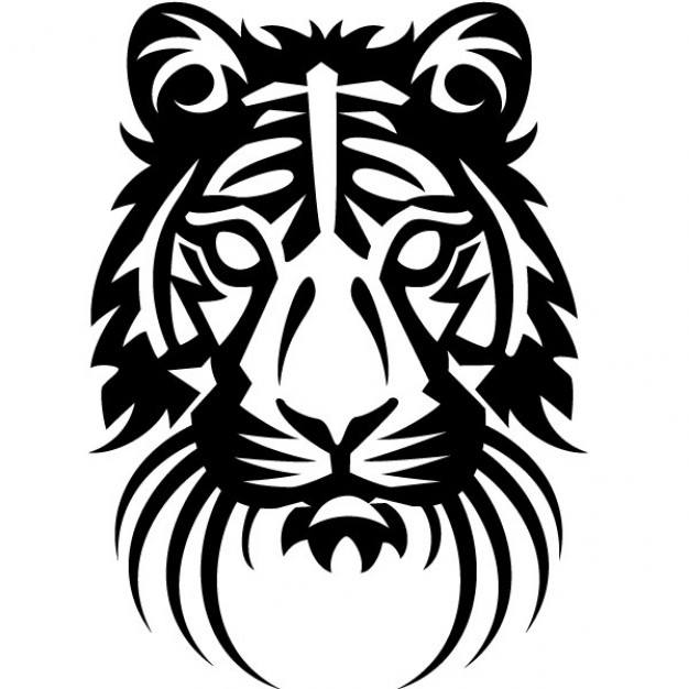 tiger head drawing vector illustration - Free Drawing Pictures