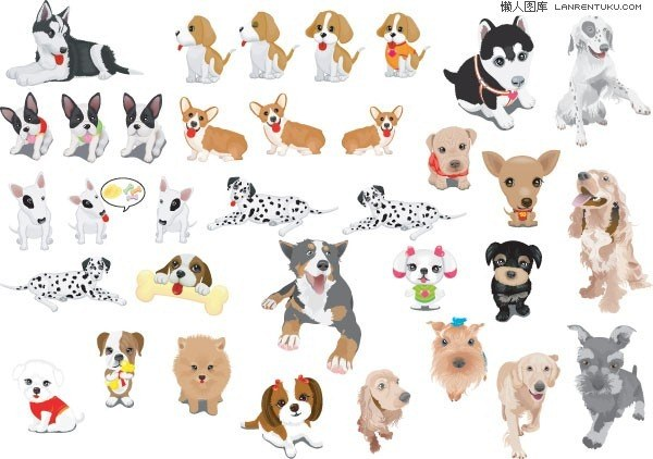 Various cute dog
