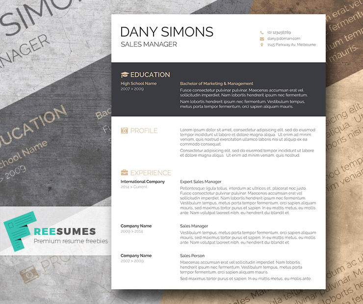 A Light and Dark Free CV Template – The Modish Applicant