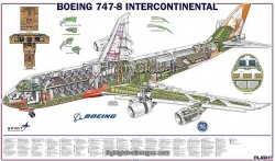 Boeing 787-8 Micro Cutaway Poster, includes aircraft interior – Photo Prints
