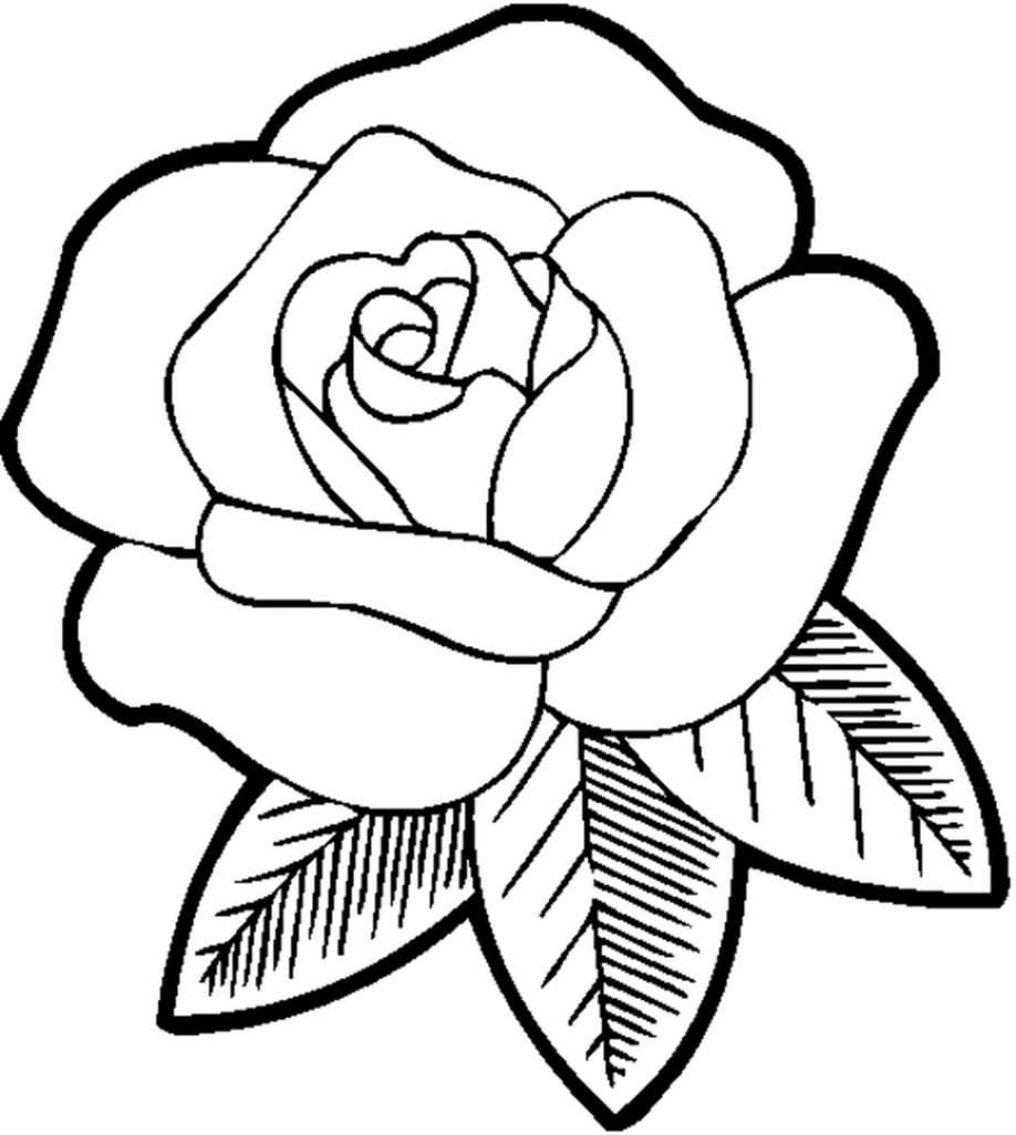 Coloring Pictures Of Flower Pots | ePin – Free Graphic, Clipart ...
