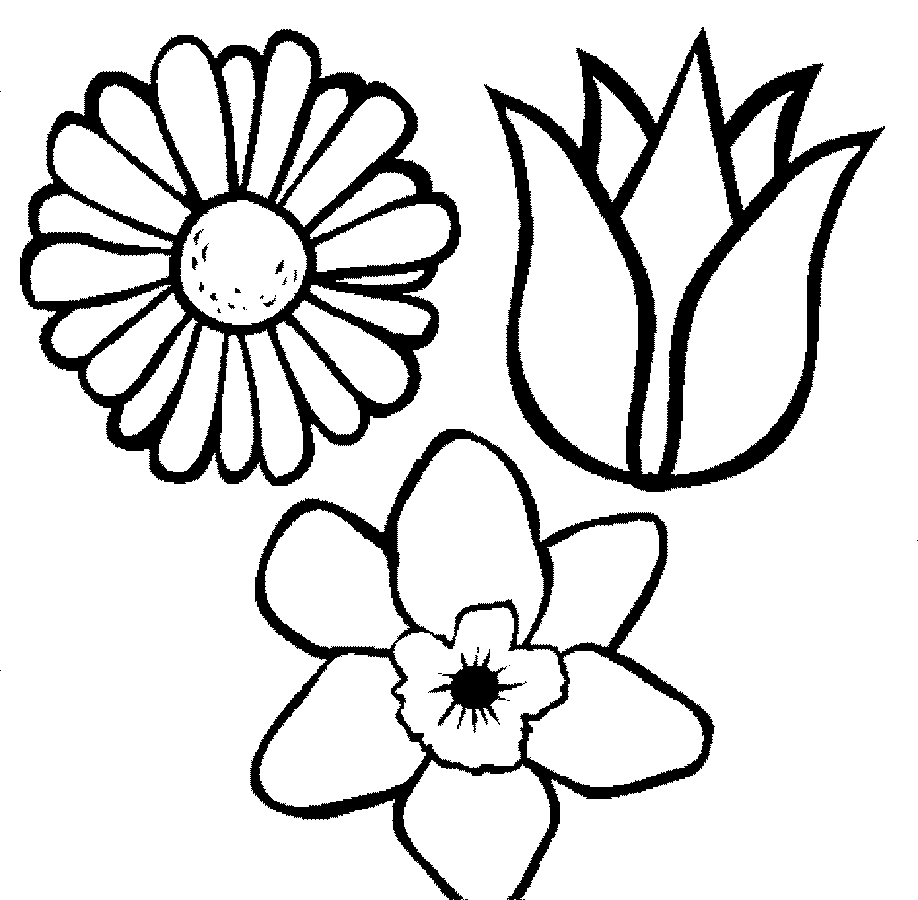 Empty Flower Pot Coloring Pages | ePin – Free Graphic and Wallpaper ...