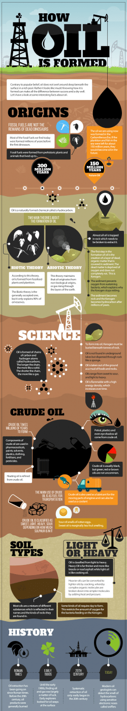 Infographic: How Oil is Formed