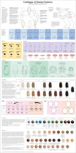 Guide to Human Types – Catalogue of Human Features