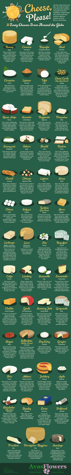 51 Types of Cheese – Imgur