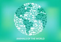 Animals Of The World Vector