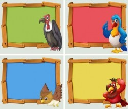 Colored wooden frame with birds vector