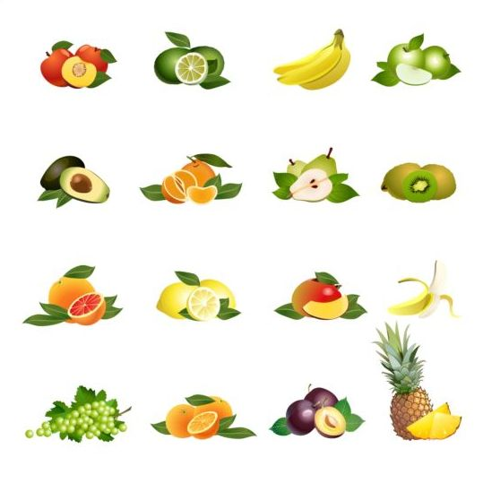 Different fruit vector graphic