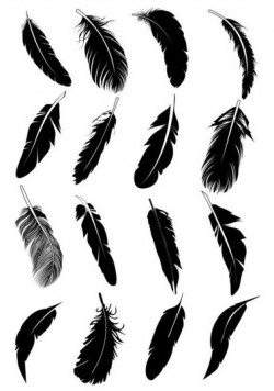 Feather silhouetter vectors set 07