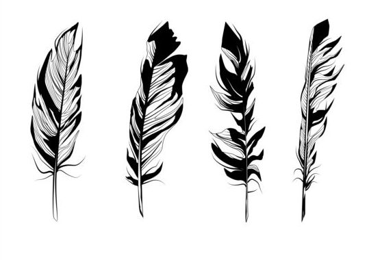 Feather silhouetter vectors set 05