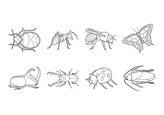 Free Insects and Bugs Icon Vector