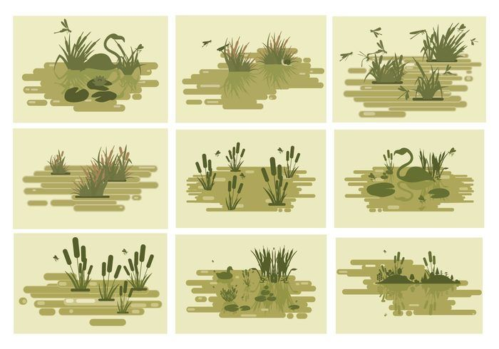 Free Swamp Lakes Vector Illustration