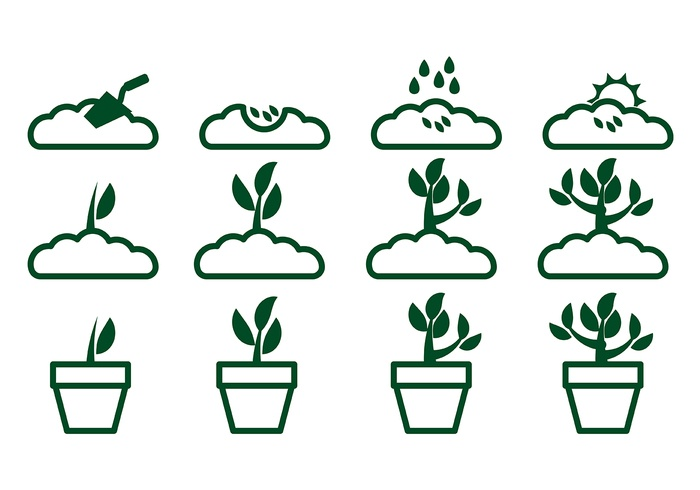 Grow Up Plant Icon Vector 2