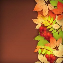 Harvest season with brown background vectors 01