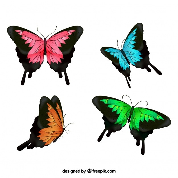 Selection of four colored butterflies