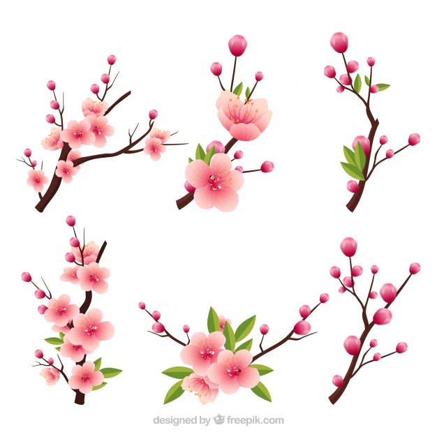 Several blooming branches in realistic style