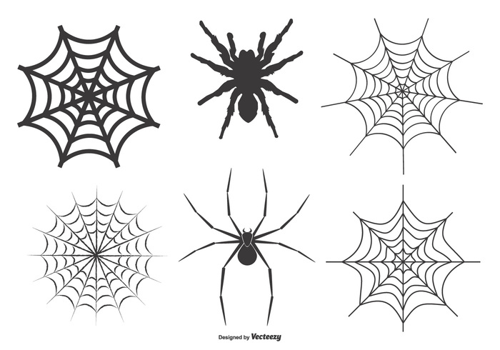 Spiders and Webs Vector Set