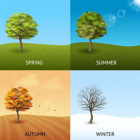 Tree with four seasons vector material 01