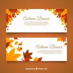 Autumnal banners with cool leaves