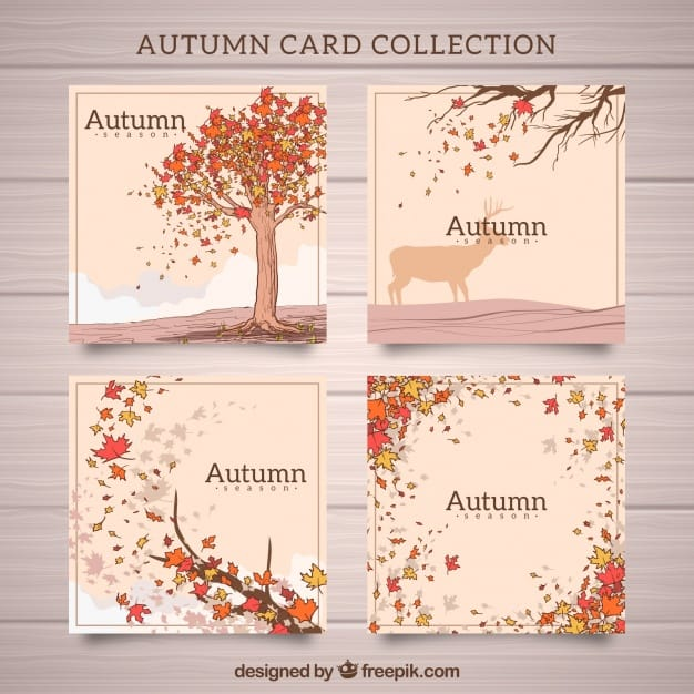 Modern set of hand drawn autumn cards
