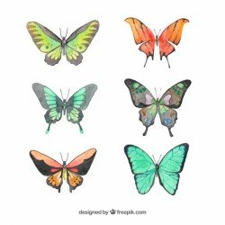 Set of watercolor butterflies