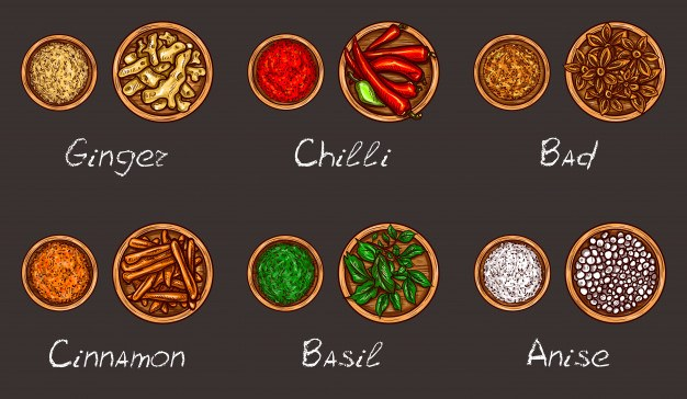Vector illustration of a variety of spices and herbs in wooden bowls on a black