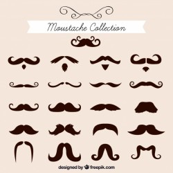Elegant moustache collection