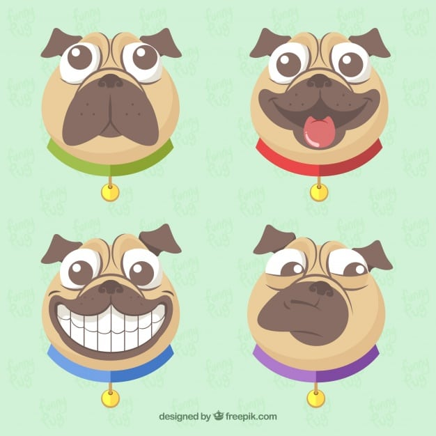 Funny pack of modern pug faces