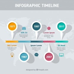 Infographic with professional timeline