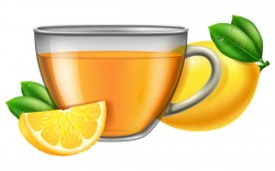 Tea lemon with glass cup vector
