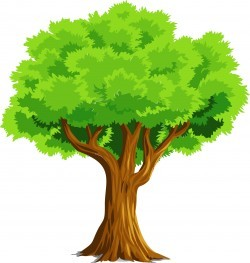 Colorful Natural Tree Icons PNG