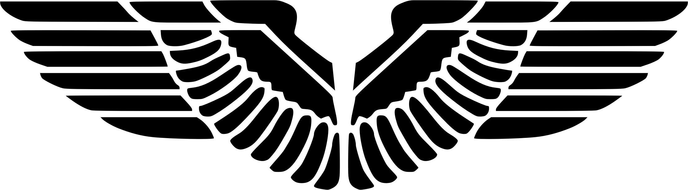 Eagle Wings Silhouette Icons PNG