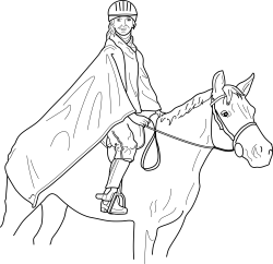 Horse and rider Icons PNG