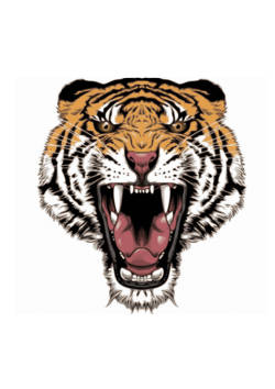Tattoo design tiger Icons PNG