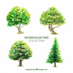 Trees collection in watercolor style