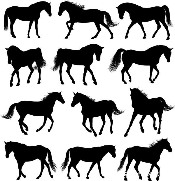 Vector horses silhouette set 01
