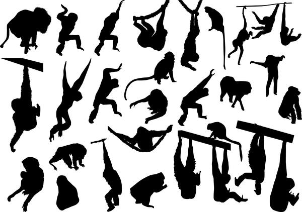 animal monkey silhouette vector 02