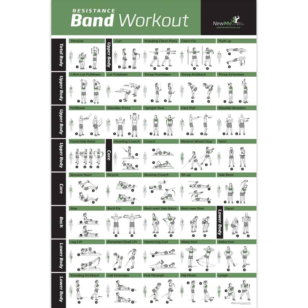 Resistance Band/Tube Exercise Poster Laminated – Total Body Workout Personal Trainer Fitne ...