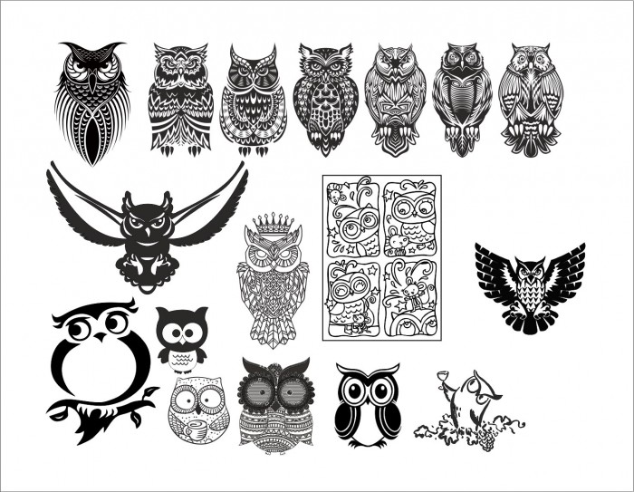 Large set of black and white owl vectors