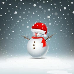 Cute snowman with red hat and snowflake vector