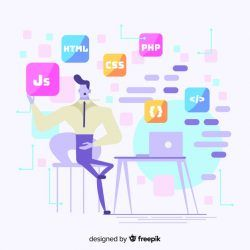 Programmer decorative illustration flat design