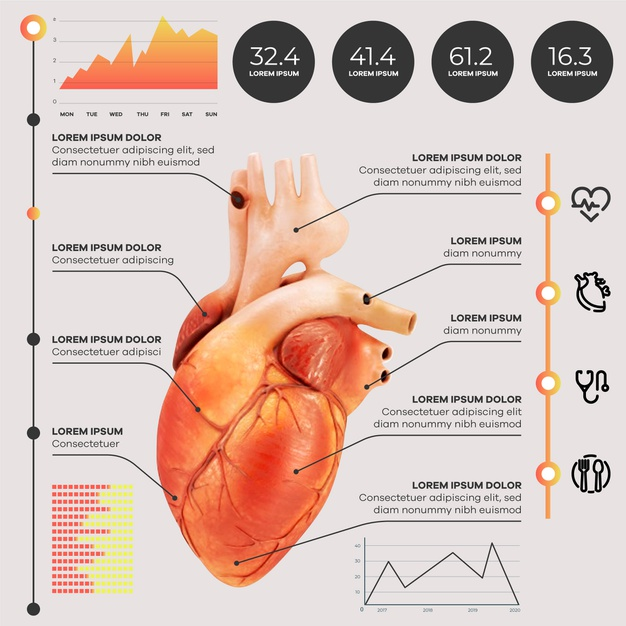 Infographic medical with photo