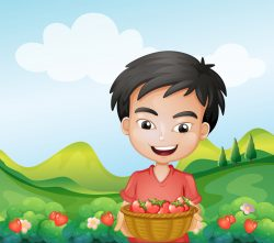 A boy holding a basket of strawberries