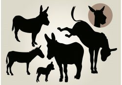 Donkey Vector Silhouette Set