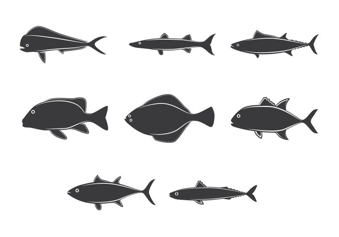 Lineart Ocean Fish Collection Drawn