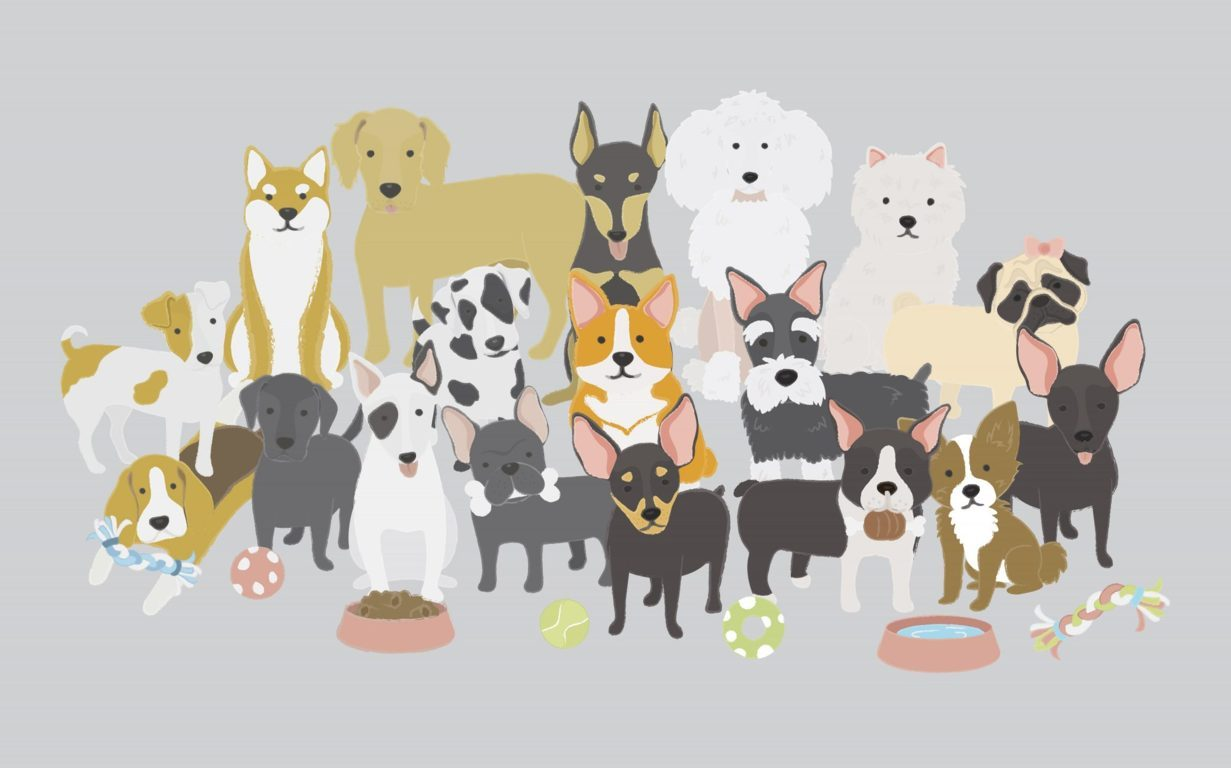dogs collection