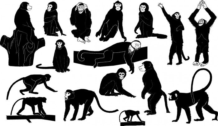 Monkey silhouettes Vector